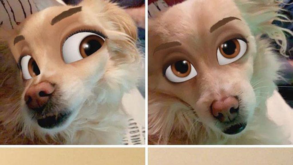 Kocak, Filter Snapchat Bikin Anjing Bak Kartun Disney