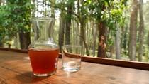 Tempat Nongkrong Millenial yang Sejuk Bagai Oase di Bandung