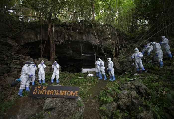Researchers put on PPE suits and stand in front of a cave entrance as they prepare to catch bats at Sai Yok National Park in Kanchanaburi province, west of Bangkok, Thailand, Friday, July 31, 2020. Researchers in Thailand have been trekking though the countryside to catch bats in their caves in an effort to trace the murky origins of the coronavirus.(AP Photo/Sakchai Lalit)