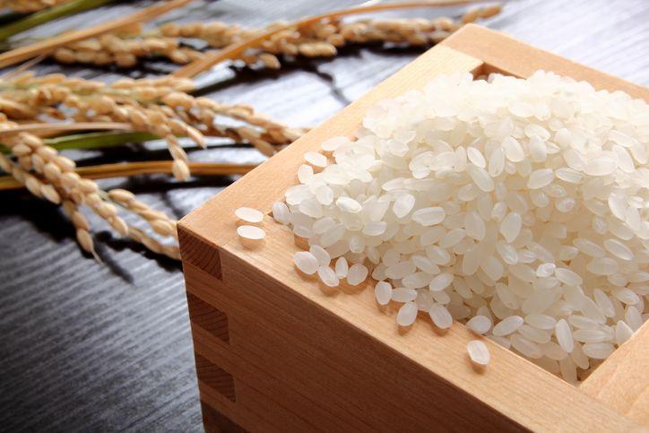 beras lokal populer