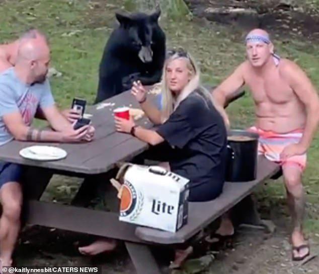 Pikin Bareng Beruang Hitam