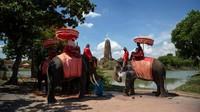 Ketika pandemi COVID-19 menghentikan pariwisata global, gajah dan mahout (pelatih) yang bekerja di cagar alam dan kamp di seluruh Thailand kehilangan pekerjaan.