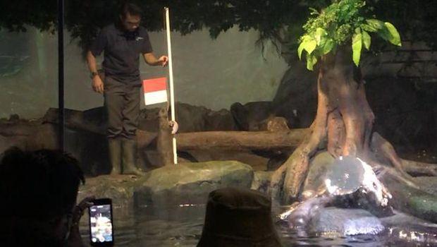 Jakarta Aquarium 17 Agustus.