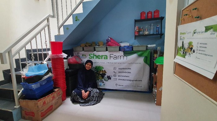 Urban Farming/Dok Shera Farm