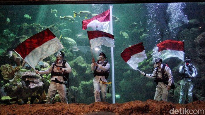 Dalam rangka memperingati HUT RI, kawasan wisata terpadu Taman Impian Jaya Ancol melakukan pengibaran bendera. Merah Putih tersebut berkibar di akuarium Sea World.