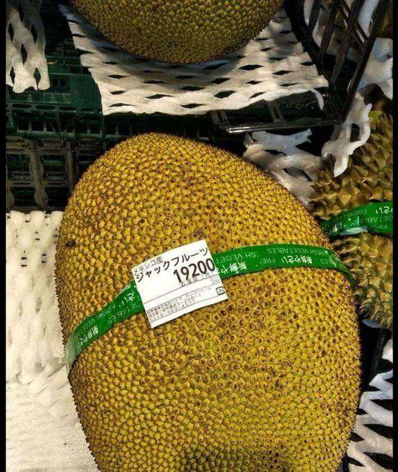 daun pisang mahal