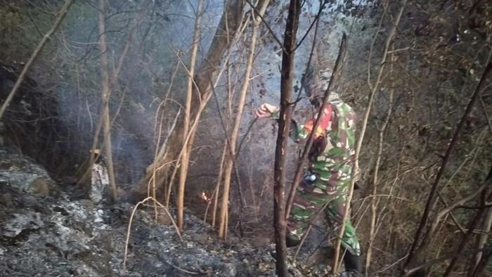 Petugas memeriksa kondisi lahan yang terbakar di Gunung Ciremai, Kuningan.
