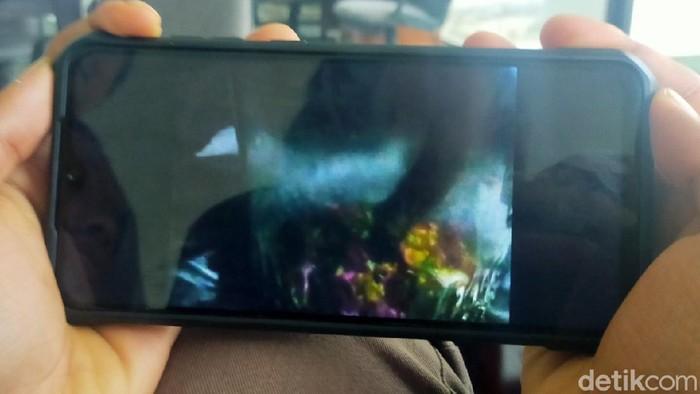 Heboh Video Viral Penangkapan Jenglot di Banyuwangi