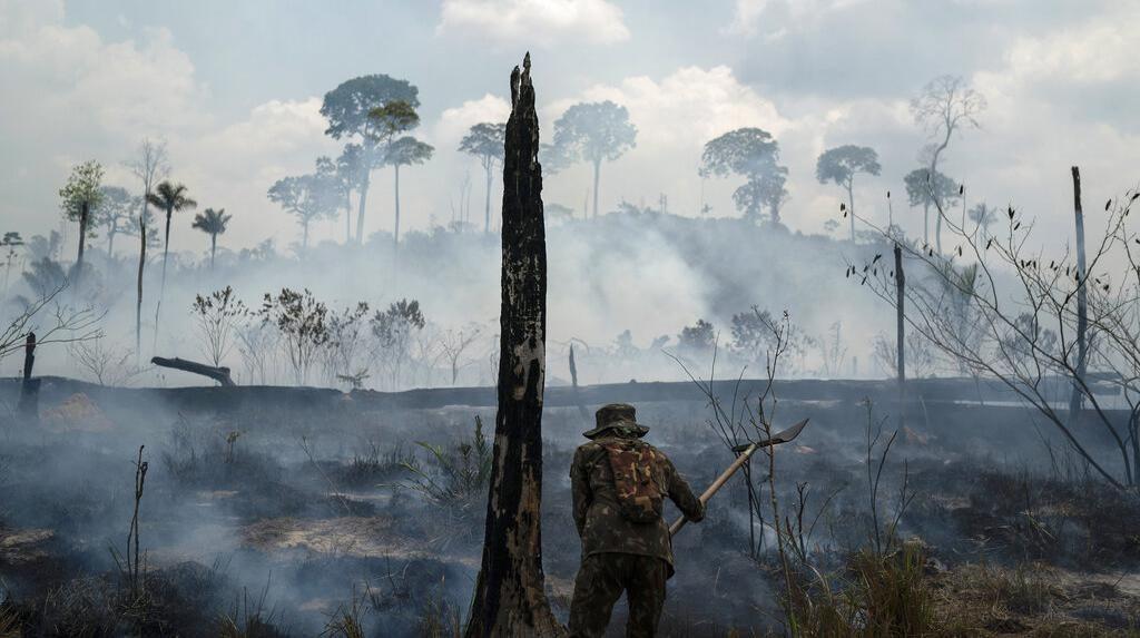 Foto-foto Kerusakan Hutan Amazon Akibat Kebakaran