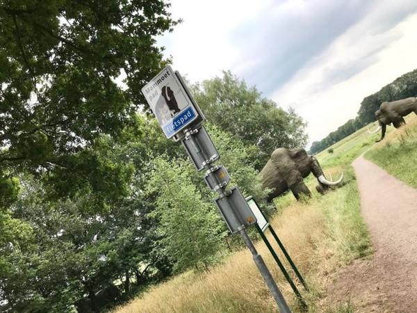 Setelah menjelajahi museumHunebedkita dapat melanjutkan perjalanan menuju desa Bronneger lewat jalan setapak ini. Ada instalasi patung mamut di sini.