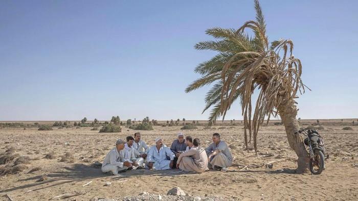 Lahan petani di Mesir ini semakin dilanda kekeringan akibat adanya pembangunan Bendungan Grand Ethiopian Renaissance yang memutus aliran air dari Sungai Nil.