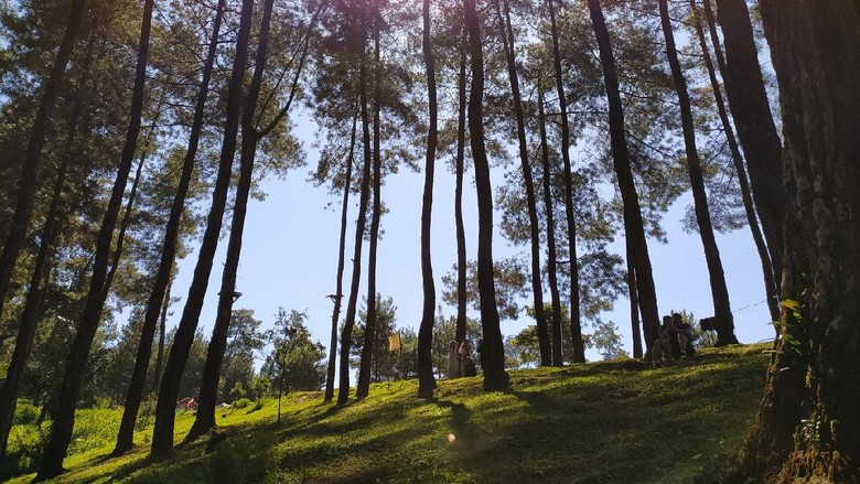 Darmacaang Hill Ciamis