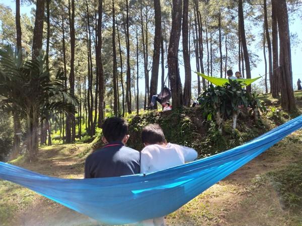 Menikmati suasana hutan pinus sambil berayun di hammock jadi pilihan wisatawan. (Dadang Hermansyah/detikcom)