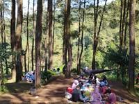 Piknik pun jadi salah satu aktivitas yang bisa dinikmati oleh pengunjung. (Dadang Hermansyah/detikcom)