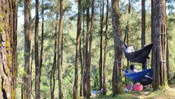 Serunya Piknik Bareng Keluarga di Darmacaang Hill Ciamis