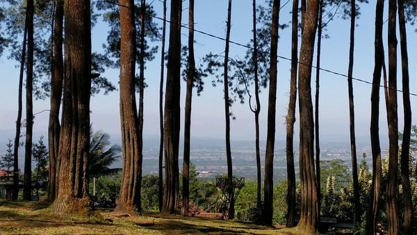 Darmacaang Hill atau juga wisata alam Batu Cakra, berada di Desa Darmacaang, Kecamatan Cikoneng, Kabupaten Ciamis. (Dadang Hermansyah/detikcom)