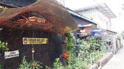 Menengok Aktivitas Budidaya Lebah Trigona di Pusat Kota Bandung