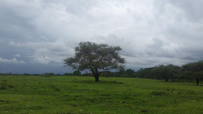 Taman nasional di Situbondo.