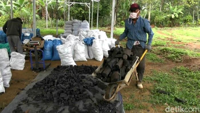 Pandemi Corona tak membuat aktivitas ekspor arang di Subang lesu. Di masa pandemi ini, perajin arang di Subang kebanjiran order ekspor ke berbagai negara dunia.