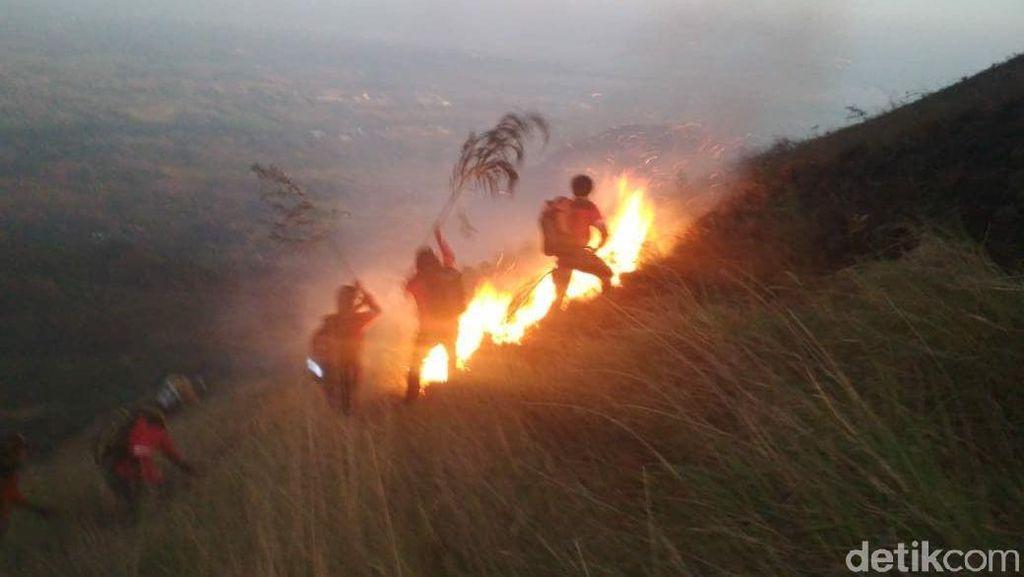 Gunung Penanggungan di Mojokerto Terbakar