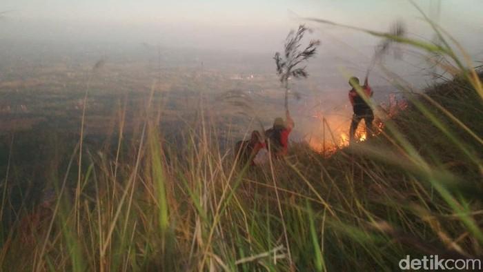 gunung penanggungan terbakar
