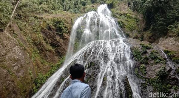 Air terjun Proposoan memiliki ketinggian sekitar 80 meter. (Muhammad Riyas/detikcom)