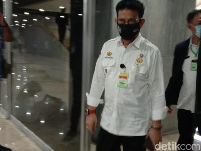 Mentan pakai kalung antivirus Corona saat rapat di DPR (Anisa Indraini/detikfinance)