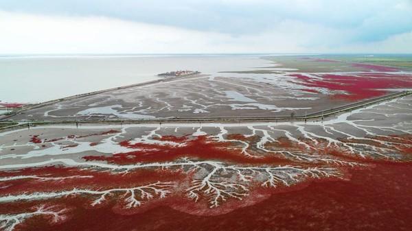 Keajaiban alam yang unik, bukan? (AFP via Getty Images/ CNN Travel)