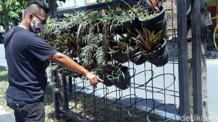 Pot tanaman hias di kawasan Geopark Ciletuh hilang