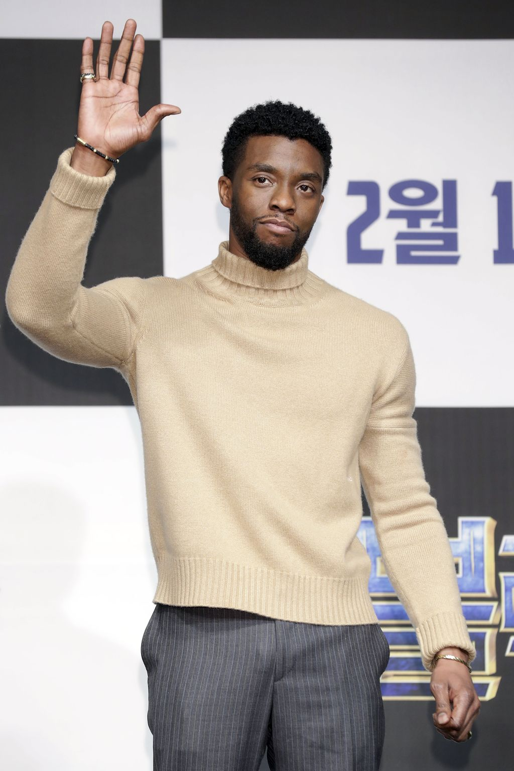 SEOUL, SOUTH KOREA - FEBRUARY 05:  Actor Chadwick Boseman attends the press conference for the Seoul premiere of 'Black Panther' on February 5, 2018 in Seoul, South Korea.  (Photo by Han Myung-Gu/Getty Images for Disney)