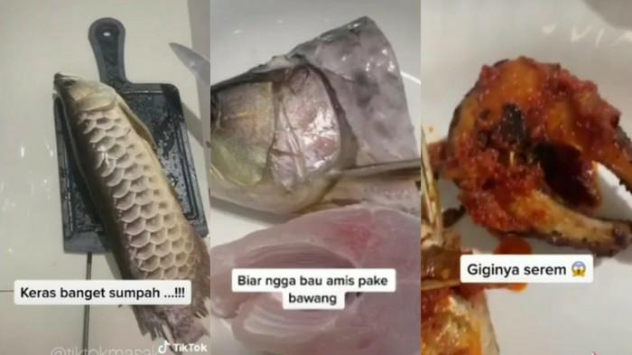 Masak Ikan Arwana Balado