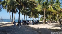 Areal kawasan wisata Pantai Labuang yang banyak ditumbuhi pohon kelapa. (Abdy Febriady/detikTravel)