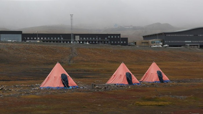 Seorang pria dibunuh oleh Beruang Kutub saat sedang tidur di tendanya di perkemahan Longyearbyen, Norwegia. Sejak tahun 1971 sudah lima orang menjadi korban.