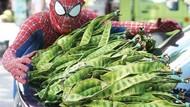 Keren! Spider-Man Ini Setiap Hari Jualan Petai di Pasar
