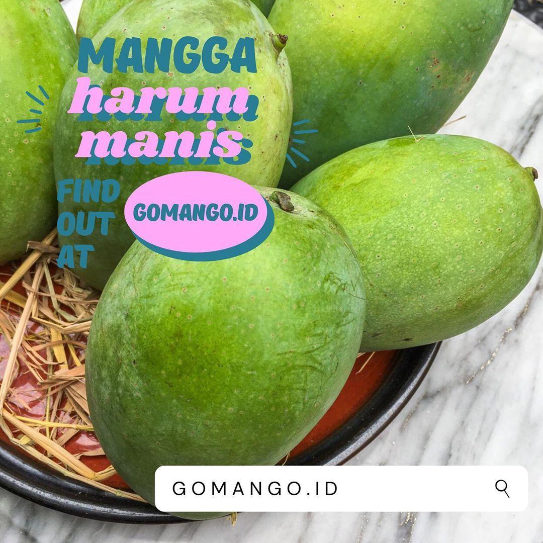 Tempat beli buah lokal via online
