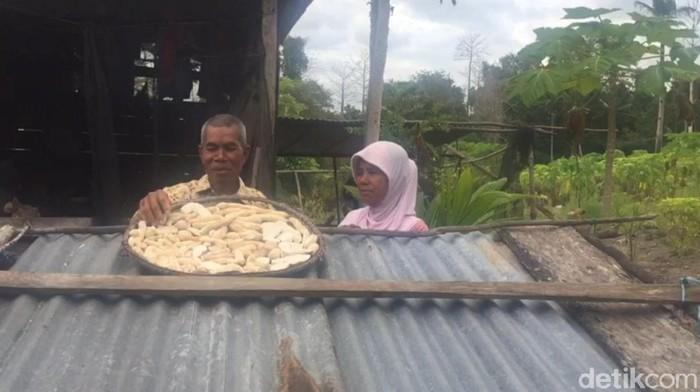 Pasangan lansia La Hasa dan Wa Zifa penghuni Pulau Pendek di Buton, Sultra (Siti Harlina-detikcom).