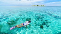 Wisata Selam Indonesia Terbaik di Dunia, 4 Kali Berturut-turut