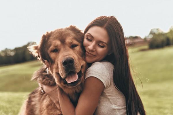 Suhu tubuh anjing lebih tinggi dari manusia yaitu 38-39,1 derajat celcius. Jadi, perlu nih hati-hati saat memawa anjing jalan-jalan di hari atau cuaca yang panas. (iStock)