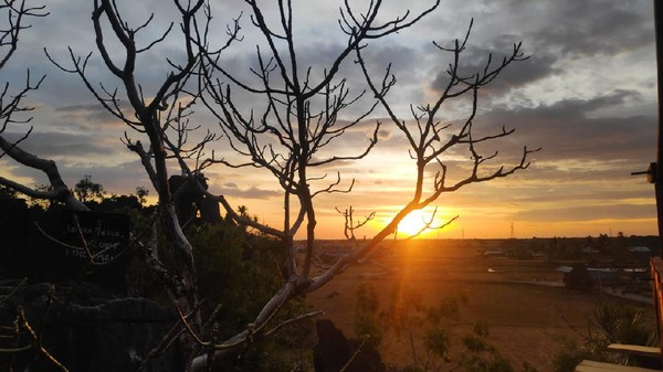 Saat senja, pemnadangan sunset dari balik hamparan sawah yang luas membuat pengunjung takjub. (Moehammad Bakrie/detikcom)