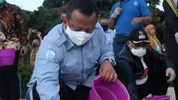 Edhy Prabowo Bandingkan Penghasilan Penambak Udang-PNS, Besar Mana?