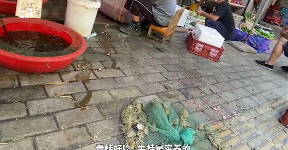 Pasar di Wuhan Jual Daging Hewan Liar