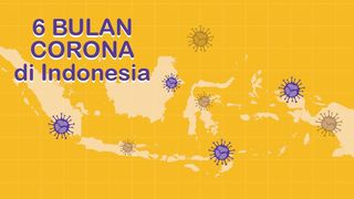 6 Bulan Corona di Indonesia