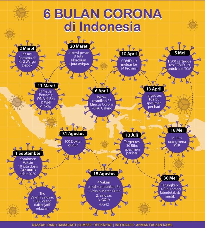 Infografis: 6 Bulan Corona di Indonesia (Ahmad Fauzan Kamil/detikcom)