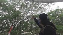 Video Showroom Mobil Hadji Kalla di Makassar Dirusak Orang Tak Dikenal