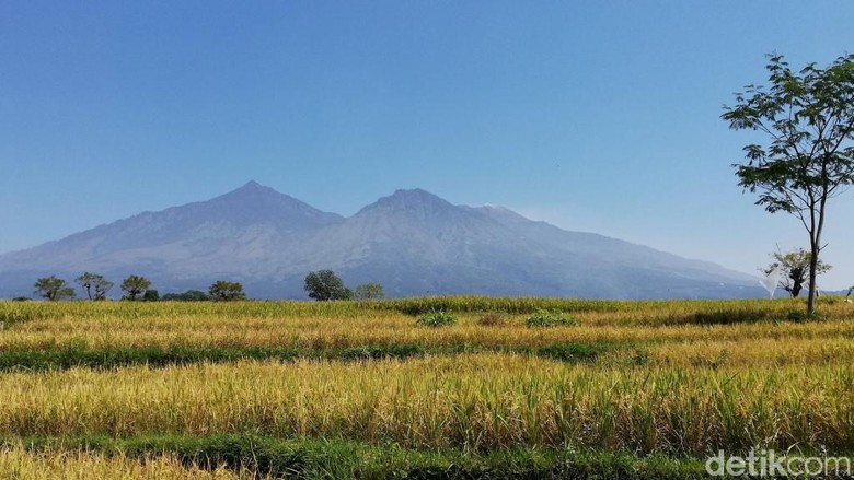 Gunung Arjuno-Welirang