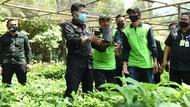 Mentan Dorong Kabupaten Malang Jadi Penghasil Bibit Alpukat Unggul