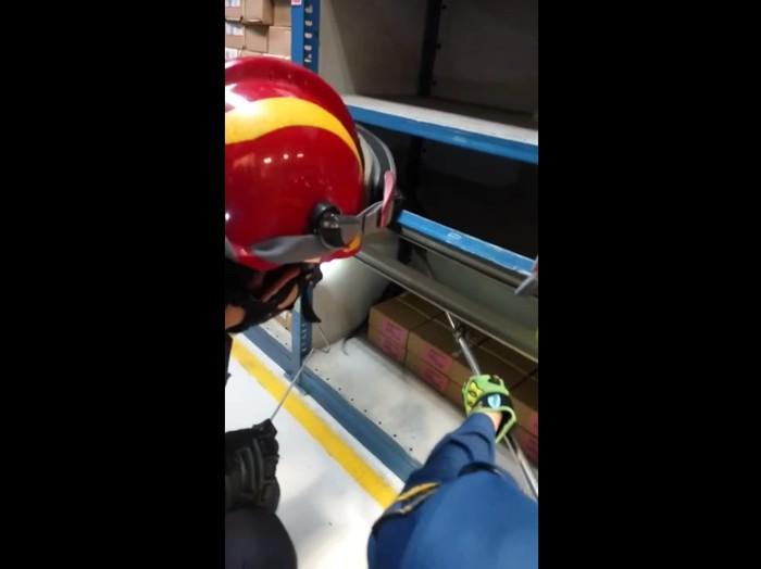 Damkar Jaktim evakuasi ular kobra yang sembunyi di rak barang