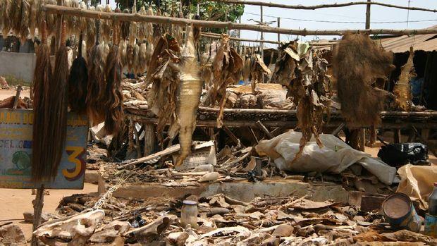 Pasar Akodessewa