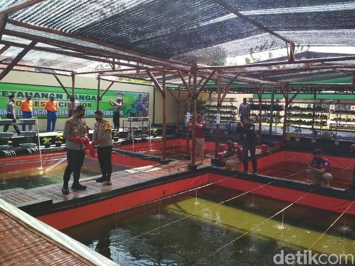 Polresta Cirebon sulap lapangan tembak menjadi kolam lele untuk membantu warga