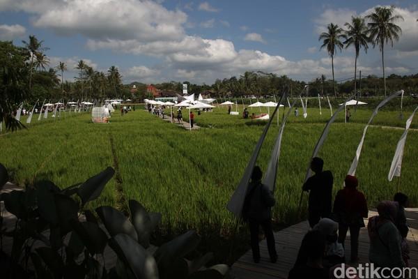 Nuansa persawahan menjadi daya tarik tersendiri bagi wisatawan yang berasal dari kota-kota besar seperti Semarang, Magelang, dan Yogyakarta.